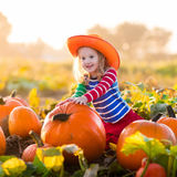 Child playing on pumpkin patch Royalty Free Stock Photo