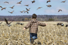 Child playing Royalty Free Stock Photo
