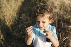 Child playing with some snails. Child playing with some snails at sunset with a field of wheat in the background Royalty Free Stock Photo