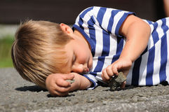 Child playing with stone Royalty Free Stock Images