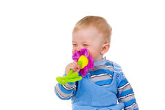 A child playing with a toy Royalty Free Stock Photography