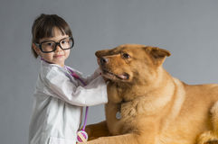Child playing veterinarian. With dog Stock Images