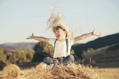 Child playing in wheat field Stock Image
