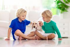 Child Playing With Dog. Kids Play With Puppy Stock Images