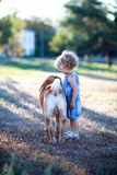 Child plays with a dog Royalty Free Stock Photography