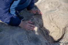 A child plays in the sand Stock Image