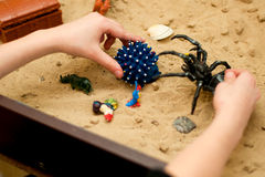 Child plays in the sand spider and hedgehog Royalty Free Stock Photography