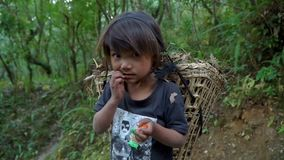 Child is porter. The little girl works as a porter. Children must work to earn some money for the family, in Nepal stock video