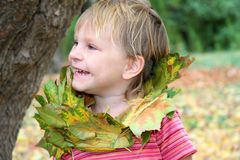 Child portrait in autumn forest Stock Photos