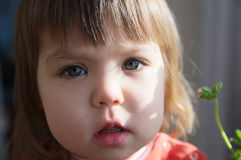 Child portrait closeup with open mouth talking, little girl grey eyes. Child portrait closeup with open mouth talking, little girl with grey eyes royalty free stock photography
