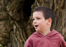 Child portrait. Portait of a happy child boy outdoors Royalty Free Stock Photos