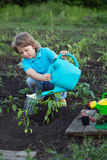 Child pours fresh sprouts from the watering can in the summer ga Stock Photos