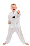Child practicing his taekwondo moves Stock Photo