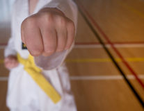Child Practises Taekwondo. Child Punches During Sport of Taekwondo Practise Stock Image