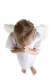 Child praying. Little blond girl with angel wings praying Stock Photos