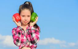 Child presenting kinds of pepper. Fall harvest homegrown vegetables. Which pepper would you pick. Vegetarian concept. Kid girl hold red and green peppers sky royalty free stock photos