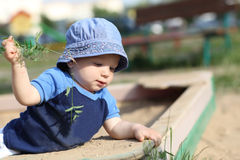 Child pulling out grass stock photography