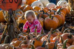 Child and pumpkin Royalty Free Stock Image