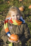 Child on pumpkin field Stock Photos