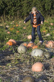 Child on pumpkin field Royalty Free Stock Images