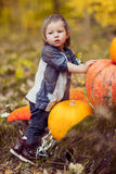 A child with a pumpkin Royalty Free Stock Photos