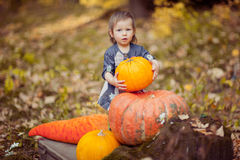 A child with a pumpkin Stock Photography