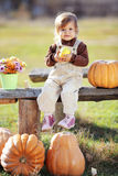 Child with pumpkins Royalty Free Stock Image
