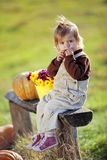 Child with pumpkins Stock Photography