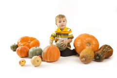 The child with pumpkins Royalty Free Stock Image
