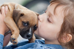 Child with pup Stock Photography