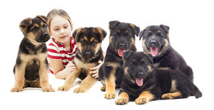 Child and  puppies Royalty Free Stock Image