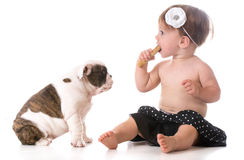 Child and a puppy Royalty Free Stock Photography