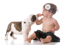 Child and a puppy Stock Images