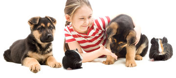 Child and puppy Royalty Free Stock Images