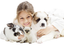 Child and puppy and kitten and rabbit Stock Photo