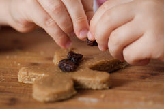 Child putting raisins on gingerbread man Royalty Free Stock Photography