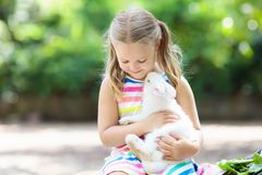 Child with rabbit. Easter bunny. Kids and pets. Child playing with white rabbit. Little girl feeding and petting white bunny. Easter celebration. Egg hunt with Royalty Free Stock Photo