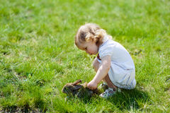 Child with a rabbit on the grass Royalty Free Stock Photography