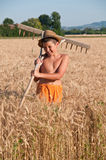 Child with rake Stock Photography