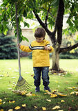 Child Raking Leaves Royalty Free Stock Photos