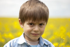 Child at rape field Stock Image
