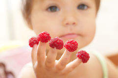 Child with raspberry on fingers, focus on hands Royalty Free Stock Photo