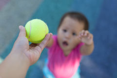 Child reaches for tennis ball from teacher. Tennis ball in focus, handing to child Royalty Free Stock Photo
