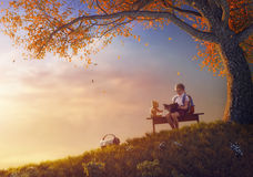 Child is reading a book. Back to school! Happy cute industrious child reading the book for her toy near tree on background of sunset. Concept of successful stock images