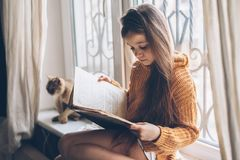 Child reading a book with cat. Child in warm woolen sweater seating on window sill and reading a book. Winter weekend with cat at home. Cozy scene, hygge concept Stock Photography