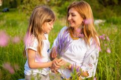 Beautiful young mother and her daughter in white having fun at the flower field in the summer. stock photos