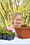 Little girl gardening, planting begonia seedlings in garden, happy child and flowers in pots Royalty Free Stock Photography