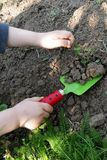 Child removing weed in garden with toy shovel. Child hands removing weed with toy shovel, green shovel blade and red ladybug like handle with black dots stock photography