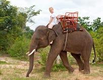Child rides on elephant Stock Photo