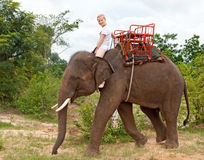Child Rides On Elephant Stock Photo